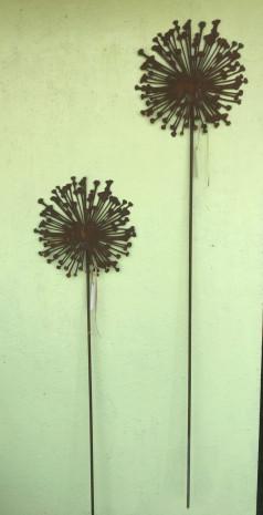 Allium Aus Rost Klein